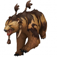 Spirit Bear Portrait