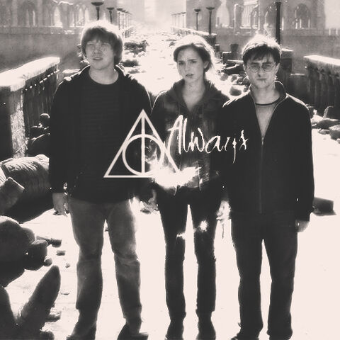 File:The golden trio.jpg