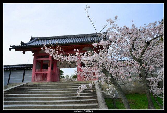 File:Kyoto2.jpg