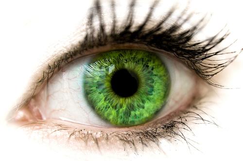 File:Green eyes-1584.jpg