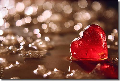 File:Heart.jpg