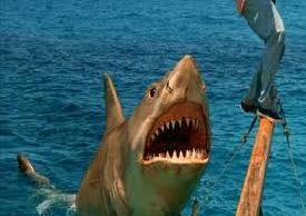 File:Jaws Revenge.JPG