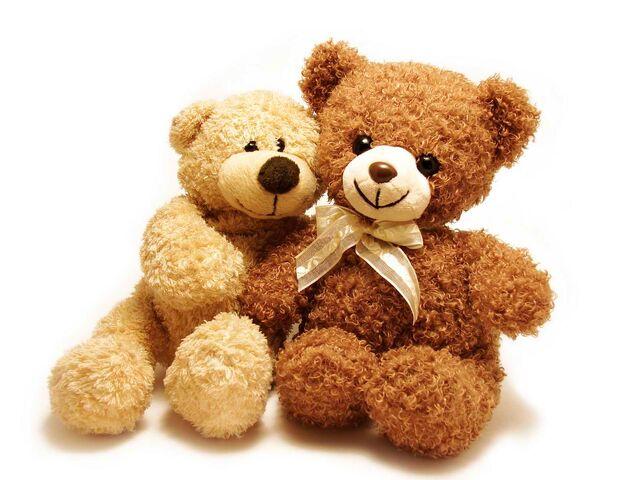 File:Beary Best Friends.jpg