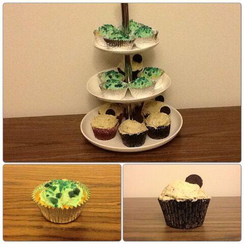 File:Cupcakesss.jpg