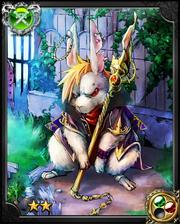 Student Rabbit Vanish NN+