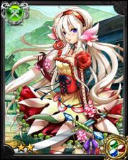 Rose Princess Marie NN++