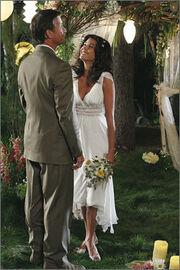 Mike/Susan-wedding