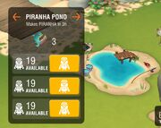Piranha pond