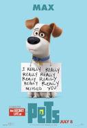 The Secret life of Pets 10