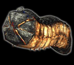 Archivo:Larva.jpg