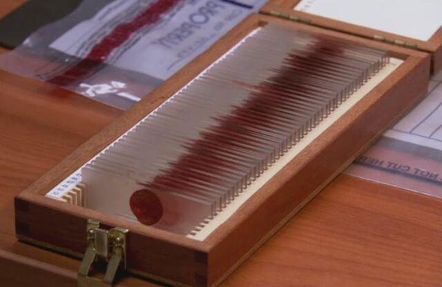 File:BloodSlideBox1.jpg
