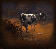 Cow-D3