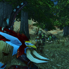Dass flaue Knistern vor einem Kampf... Die Harpyien werden kommen...