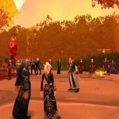 Alle Aufmerksamkeit gilt der symbolreichen Hochzeitszeremonie (01.02.09).