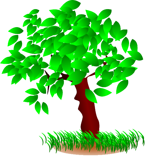 Datei:Baum.png | Die Auserwählten Wiki | Fandom powered by ...