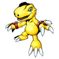 Agumon (2006 anime) b.jpg