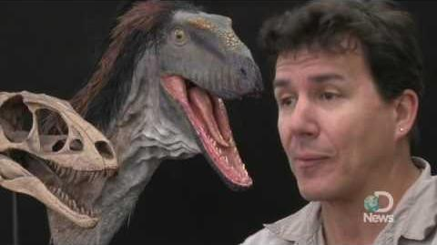 Tiny T-Rex-Like Dino Debuts