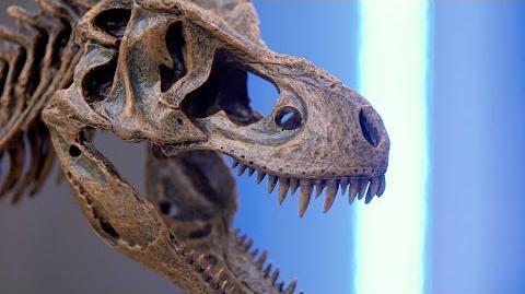 Jurassic Dinosaur Advisor Jack Horner