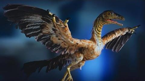 The Perfect Reptile-Bird Hybrid Definitely Looks the Part
