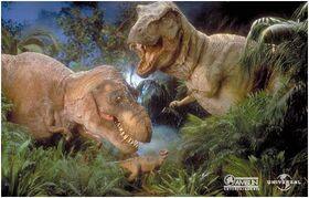 Tyrannosaurus rex family