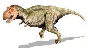 Tyrannosaurus BW