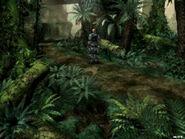 Jungle north route 2