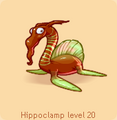 Hippoclamp brown green.png