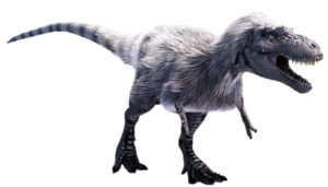 Feather Albertosaurus.png