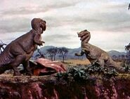 The Animal World Ceratosaurus