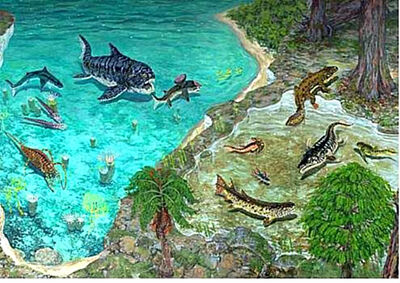 Devonian marine transitions