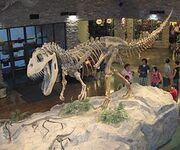 250px-Museum AL dinosaur