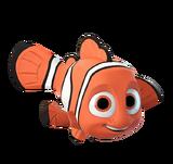 NemoTop