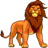 TLK Simba RichB