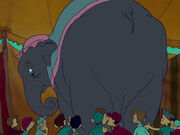 Dumbo-disneyscreencaps.com-2092