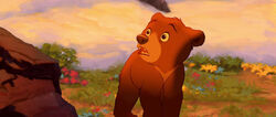 Brother-bear-disneyscreencaps.com-9003