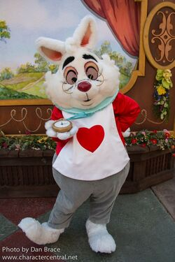 white rabbit disney wiki fandom powered by wikia