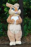 Miss Bunny WDW