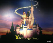 Disneys-earport-castle-with-pixie-dust