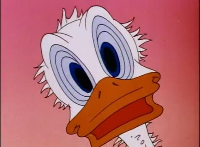 File:Donald Duck Duck Pimples 1945 - YouTube5.jpg