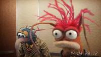 Muppets-com40