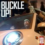 BH6 Buckle Up