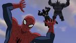 Spider-Man Agent Venom Rhino Falling USMWW