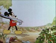 Mickey's Garden-14
