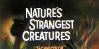 Nature's Strangest Creatures