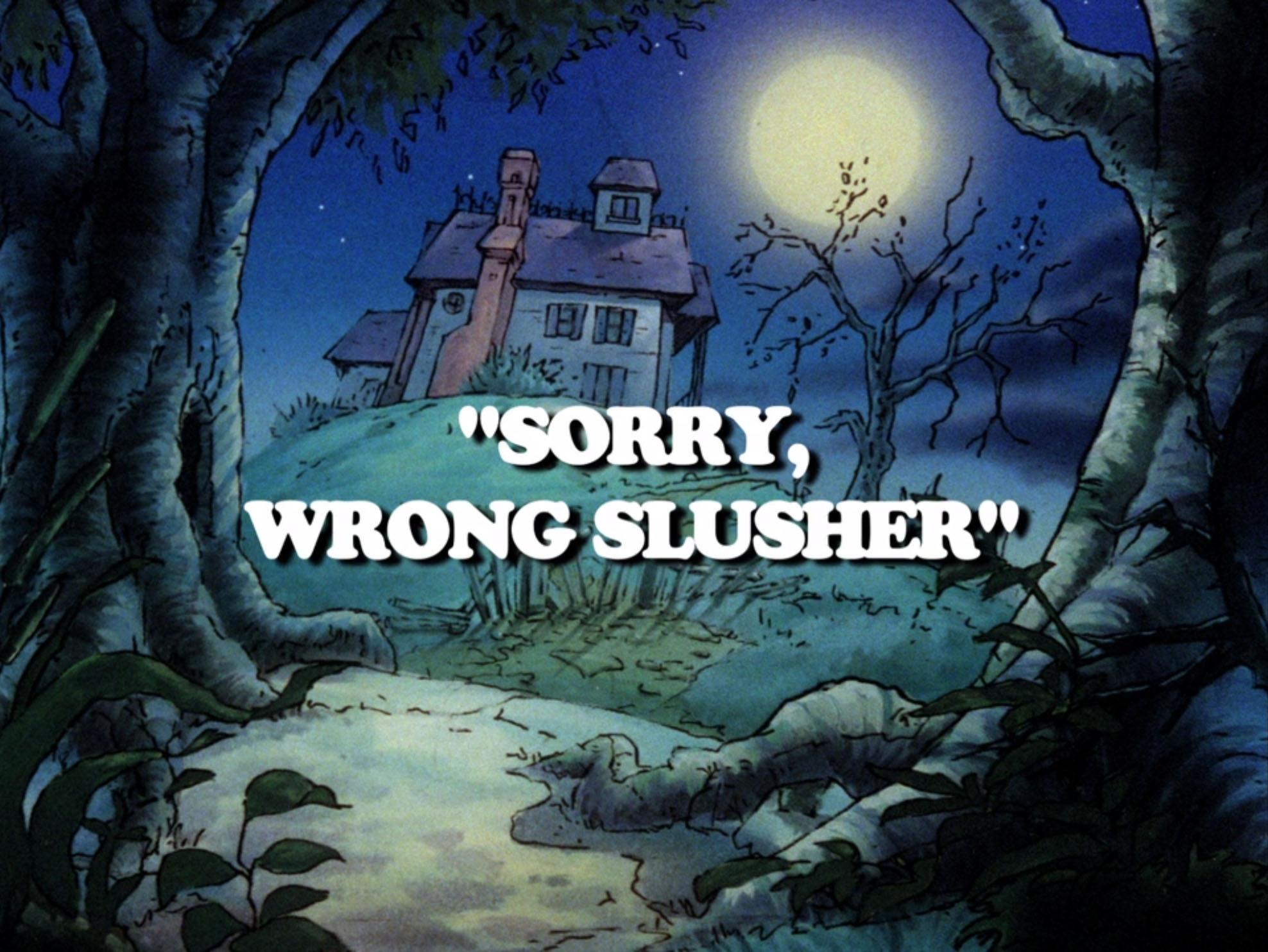 File:Sorry wrong slusher.jpg