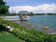 HK Disneyland Inspiration Lake 湖心涼亭 Pavillion background