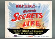 Secrets of life lobby