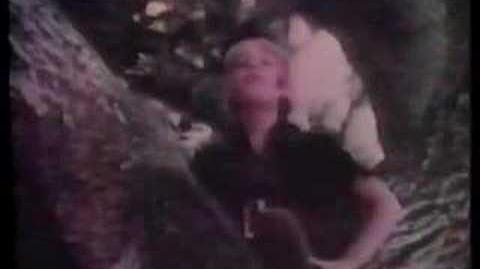 1971 Walt Disney World Commercial