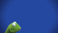 Muppets-com24