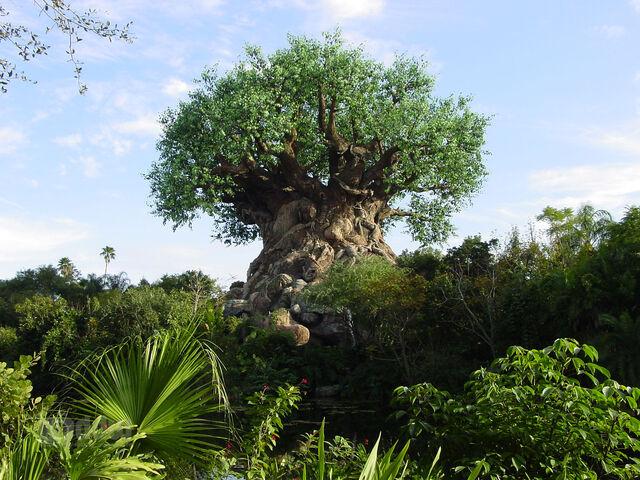 File:Discovery Island at Disney's Animal Kingdom.jpg
